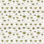 Papier peint - MissPrint - Grasslands - Zest